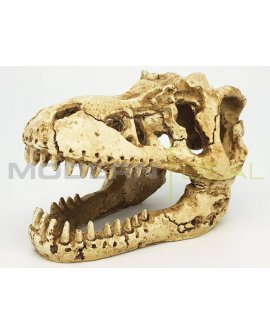 Fish Tank Ornament - DINO SKULL