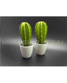 Cactus Set H - 2pc