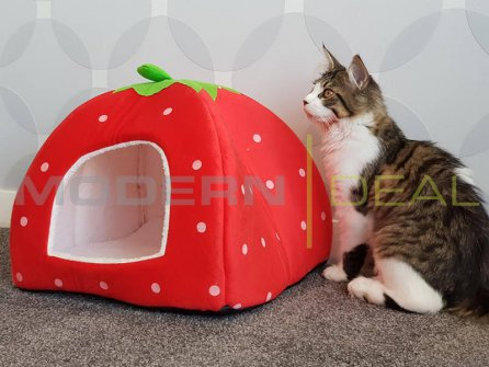 Pet Bed - Strawberry