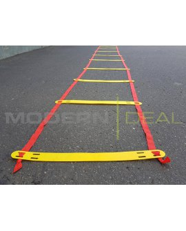 Fitness Ladder 4.6m