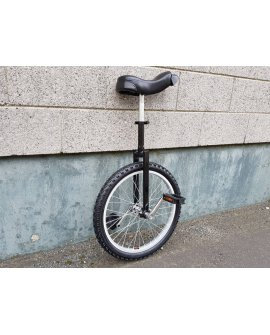 Unicycle - 20""